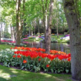 Tulip Time River Cruise – Highly Recommended
